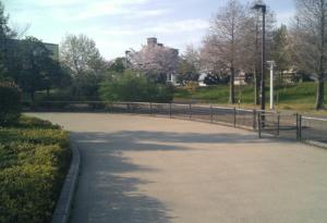 パークアリーナ小牧・ローラースケート場20200411-11