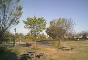 パークアリーナ小牧・ローラースケート場20200411-09