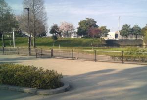パークアリーナ小牧・ローラースケート場20200411-12