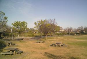 パークアリーナ小牧・ローラースケート場20200411-10
