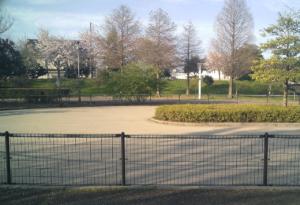 パークアリーナ小牧・ローラースケート場20200411-04