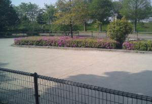 パークアリーナ小牧のローラースケート場・花04