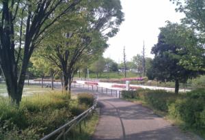 パークアリーナ小牧のローラースケート場・花01